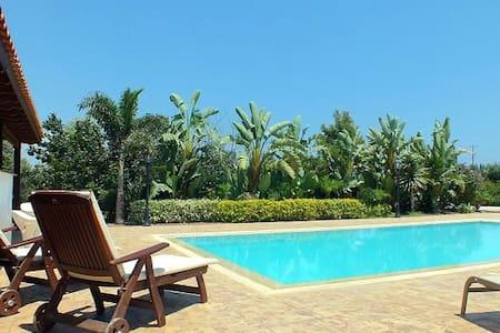 Modern luxurious garden villa - Villa
