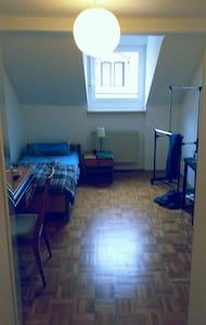 Zentrales Zimmer in Neustadt Stadtmitte - Neustadt an der Weinstraße - Apartment