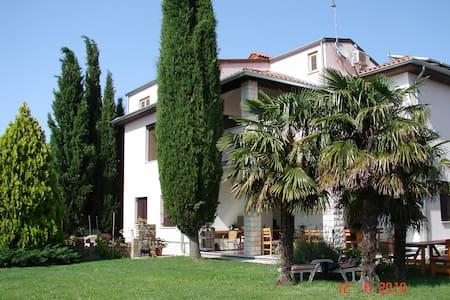 Apartments Ritoša Luciano - Lejlighed