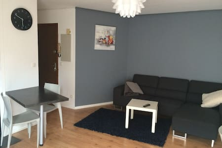 Appartement T2 proche gare - Agen - Agen - Apartment