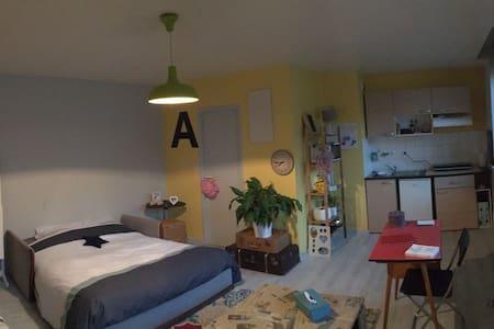 Grand studio lumineux - Apartment