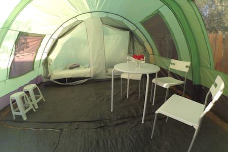 Spacious tent next to the sea! - Tenda