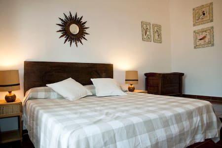The Green Room has a double bed and a private small terrace  GPS: 42,434444  11,733611
