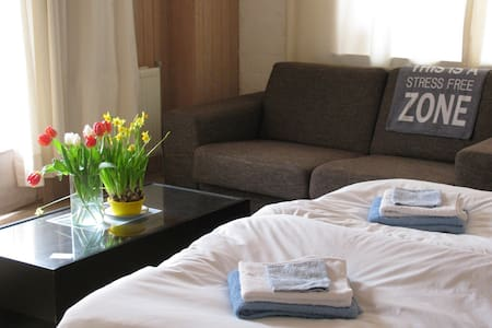 Deluxe Room with Private Bathroom  - Valthermond