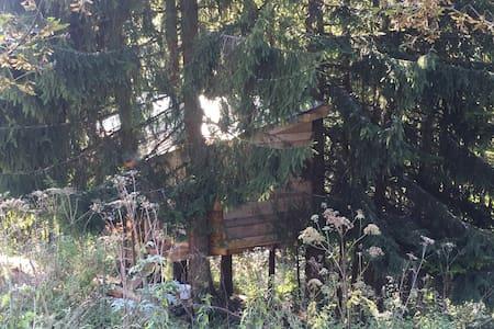 Cabane-chambre accrochée aux arbres - Treehouse
