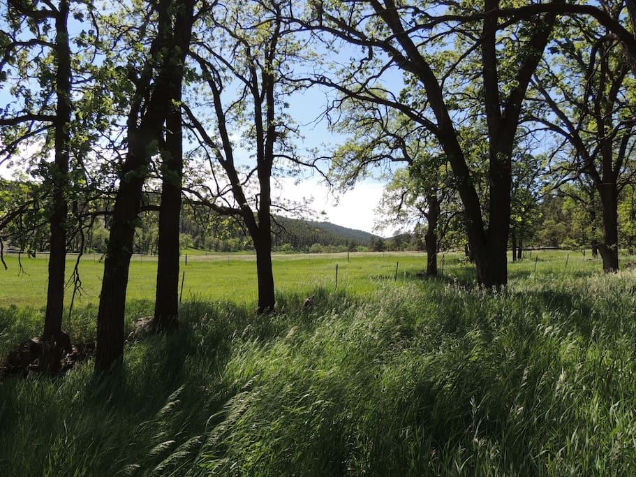 Ghost Canyon Ranch And B Amp B Bed Amp Breakfasts For Rent