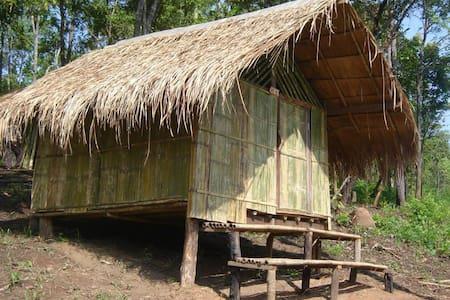 Hut - Haus