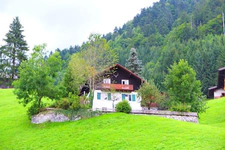 Unique Austrian Forester's House - Ház