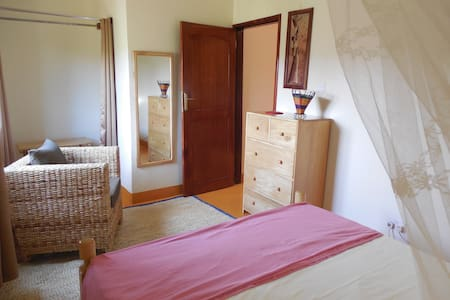 One Bedroom Apartment - Pis