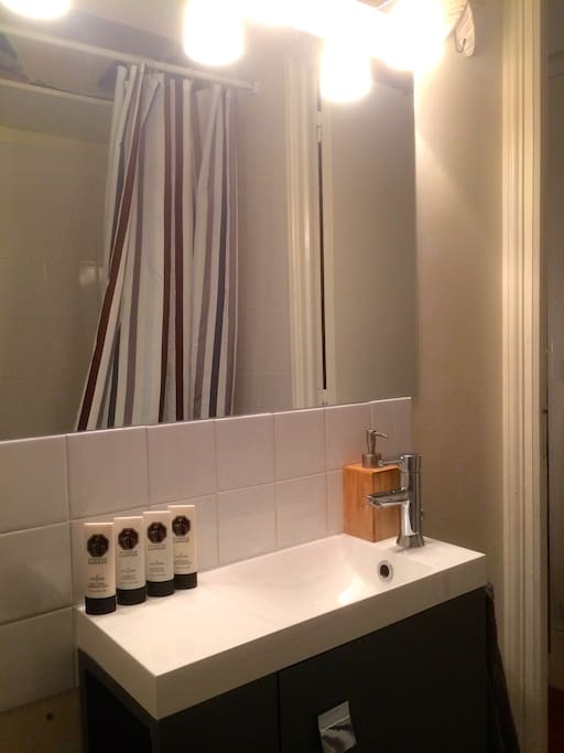 The bathroom, with shower & WC (best picture to come)