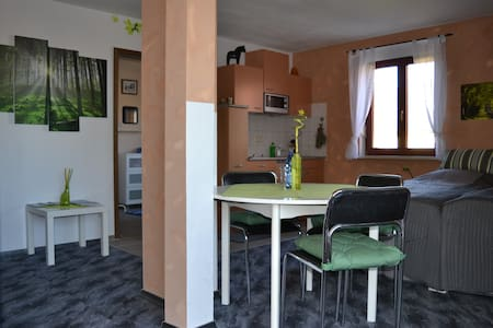 Holiday apartment at historic farm - Wermsdorf - Pis