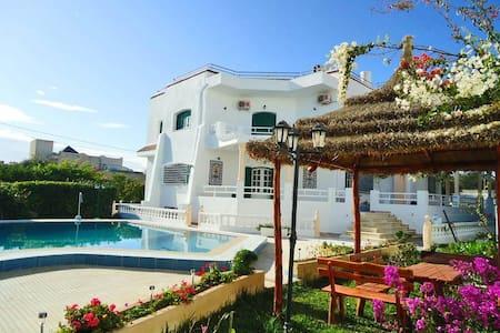 Grande villa avec piscine et jardin - Willa