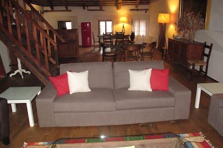 Villa Tiepolo Passi - Loft - Villa