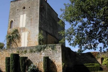 Superb Castle to rent in Périgord
