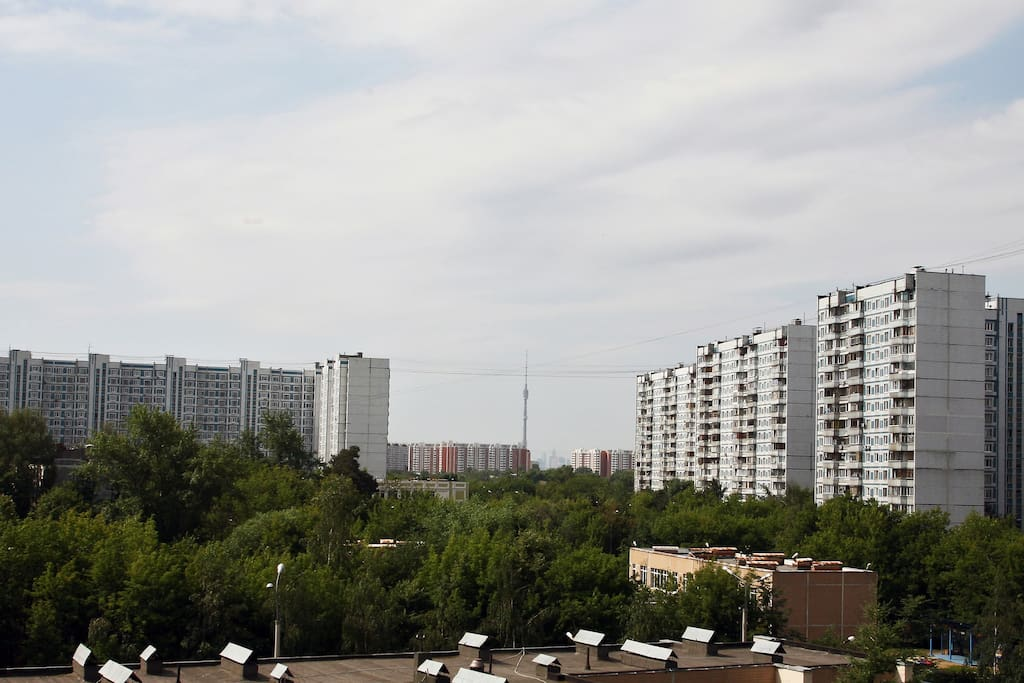 The flat with the view of TV tower