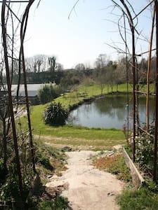 Summerhouse Cabin overlooking ponds - Cabin