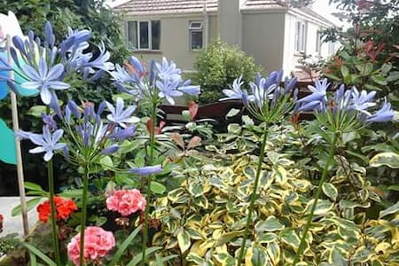 Spacious detached house and garden - Bideford - Bed & Breakfast