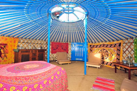 Montys Yurt - Haverfordwest