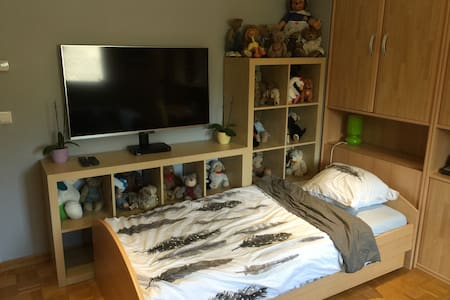 Beautiful Room in Luxemburg City! - Luxembourg District - Condominium