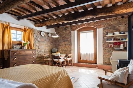 LA CORTE. Monolocale antica Toscana - House