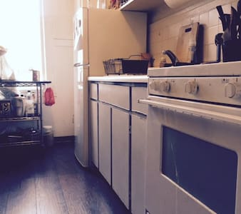 Sunny Furnished Studio on Nobhill with 2 Cats - Apartment