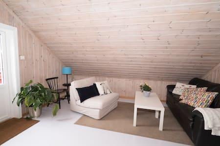 Romslig og fin leilighet/anneks - Apartment