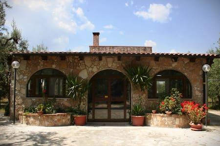 Villa among the olive trees - Andria - Villa