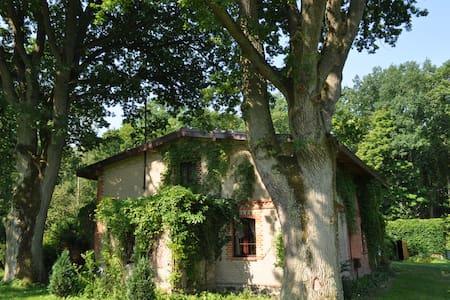 Dom pod Dębami - House