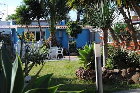 Casa con encanto rodeada de jardín - Haus