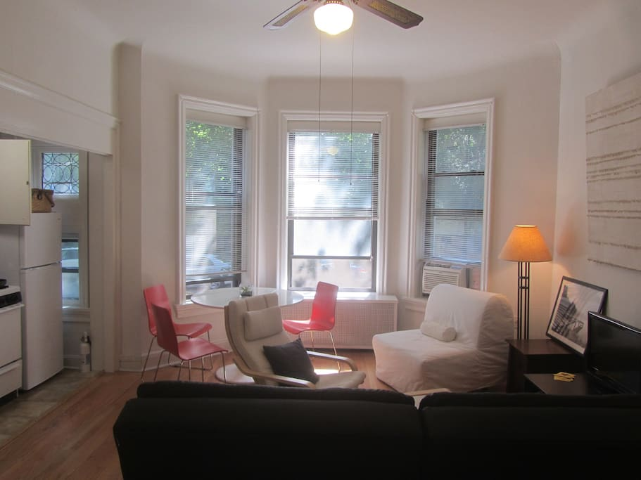 Living room - looking West out onto treelined avenue/historic neighborhood