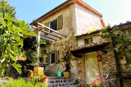 Tranquil Umbrian Hillside Getaway - San Leo Bastia - House