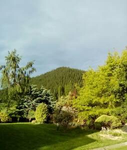 Peaceful Retreat Nestled in hills - Blenheim - Rumah
