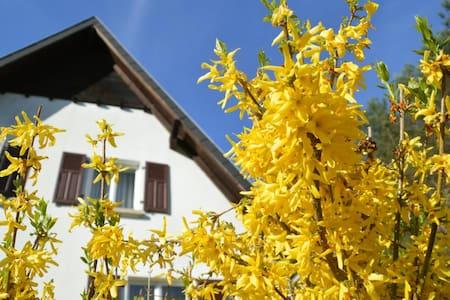 Gite 4 étoiles Vosges du Nord - House