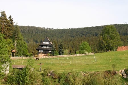 Fewo Forsthaus Biberach am Nationapark Schwarzwald - Appartement