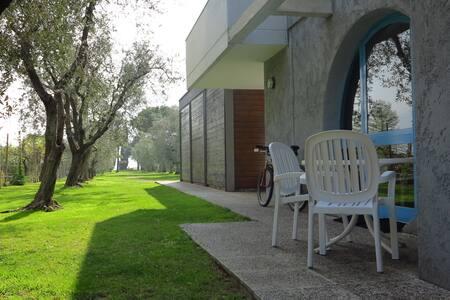 Beachfront House Sandra Bertolini