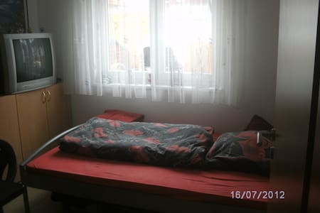 A samll room in Ingelheim - Ingelheim am Rhein - House
