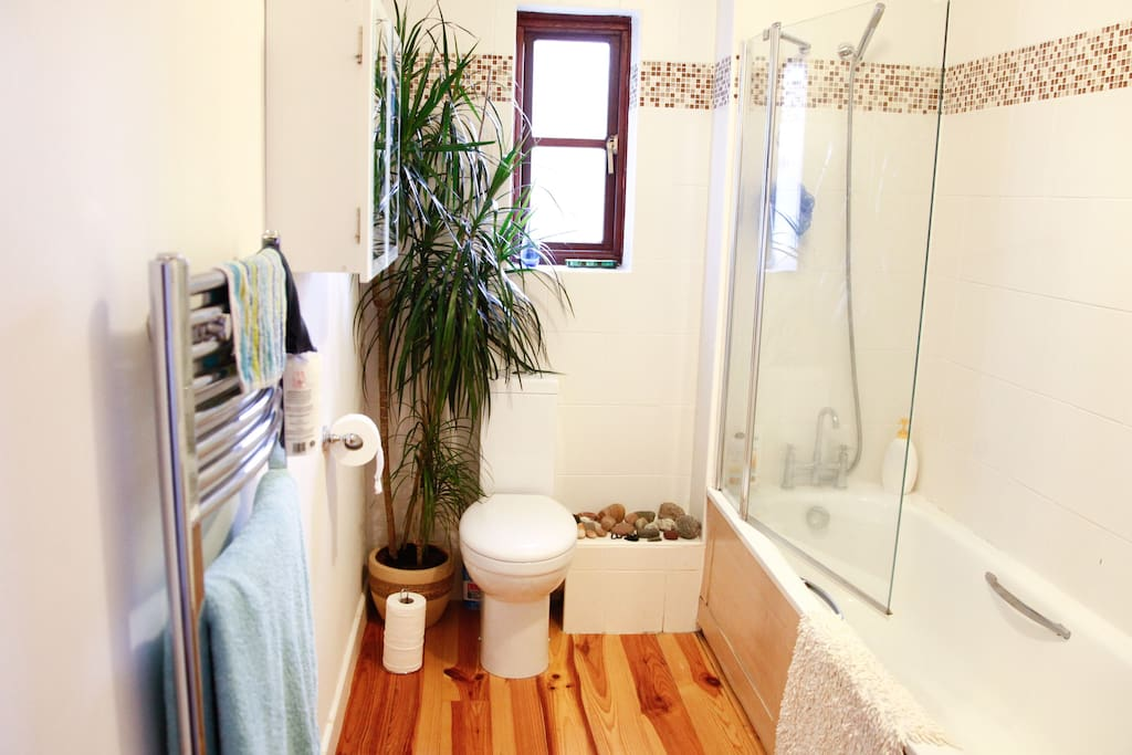 Bathroom (shared)