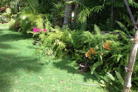 CABANA in large tropical garden - Bed & Breakfast