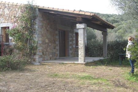 Deliziosa villa vicina al mare - San Teodoro
