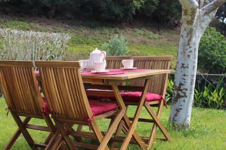 Casa Rústica com Jardim - Lagoa - Casa