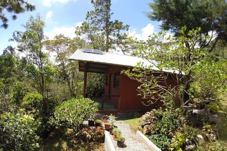 Jilguero Cabins & Tours EcoRetreat - Hornito - Cabin