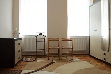 Ultracentral 1 room,kitchen+bath - Cluj-Napoca - Apartment
