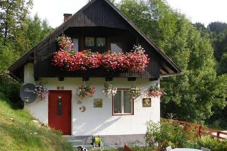Casa tradizionale in Carinzia - Ház