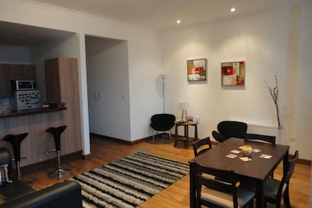Fully furnished downtown apartment - Punta Arenas - Appartamento