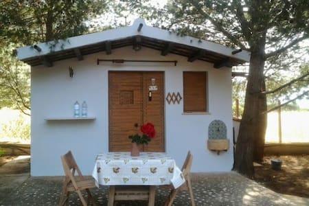 San Vito lo Capo, Castelluzzo. Lovely casetta!! - Haus