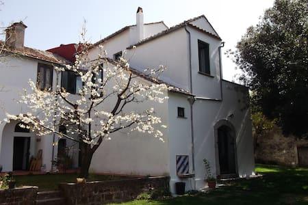 Villa Mimosa- Un angolo di paradiso - Huvila