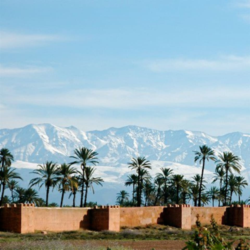 View of the snowy atlas mountains!! These can be see from the top terrace in the winter months