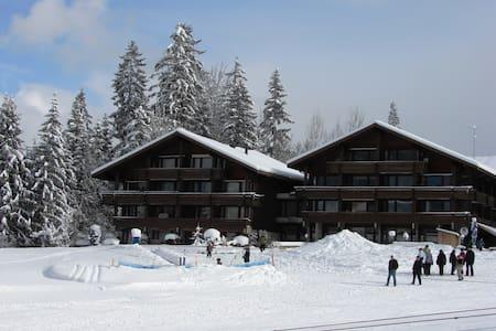 Ferien im Naturpark Diemtigtal - Horboden - Wohnung