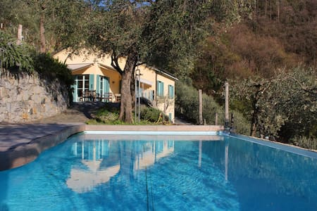 Villa, pool, seaview in olive grove - Moneglia