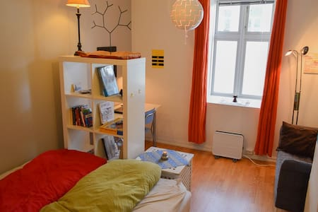 Affordable Room in City Center - Pis